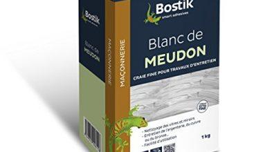 Photo of 30 Meilleur test Blanc De Meudon en 2021: après avoir recherché des options