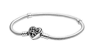 Photo of 30 Meilleur test Bracelet Pandora Femme en 2021: après avoir recherché des options