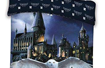 Photo of 30 Meilleur test Housse De Couette Harry Potter en 2021: après avoir recherché des options