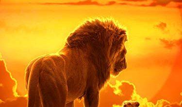 Photo of 30 Meilleur test The Lion King en 2021: après avoir recherché des options